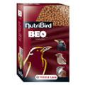 NutriBird Beo komplet - Formában tartó és tenyészeleség