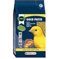 Gold Patee Canaries - Lágyeleség sárga kanáriknak
