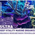 Fauna Marine Reef Marine Vitality Organics