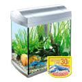 Tetra AquaArt 30 literes komplett akvárium