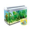 Tetra AquaArt 60 literes komplett akvárium