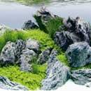 Új! Juwel akvárium poszterek