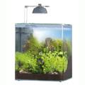 Ehein nano akvárium 24 literes